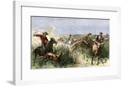 Cowboys Cutting Out Cattle to Drive a Herd from Texas to Kansas, c.1870--Framed Giclee Print