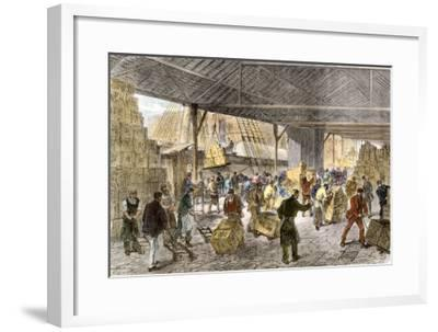 Unloading Tea-Ships in the British East India Company's Docks, London, c.1860--Framed Giclee Print