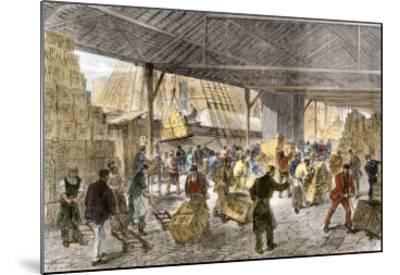 Unloading Tea-Ships in the British East India Company's Docks, London, c.1860--Mounted Giclee Print