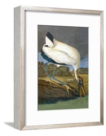 Wood Stork-John James Audubon-Framed Art Print