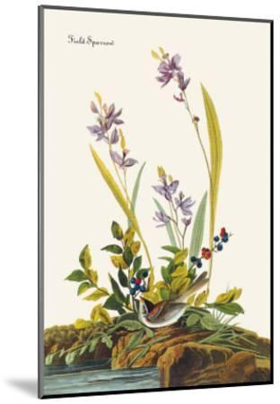 Field Sparrow-John James Audubon-Mounted Art Print