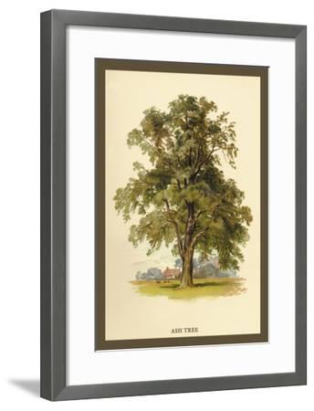 Ash Tree-W^h^j^ Boot-Framed Art Print
