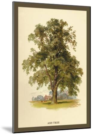 Ash Tree-W^h^j^ Boot-Mounted Art Print
