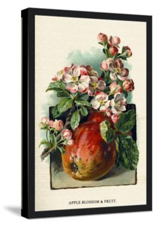 Apple Blossom and Fruit-W^h^j^ Boot-Stretched Canvas Print