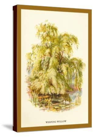 The Weeping Willow-W^h^j^ Boot-Stretched Canvas Print