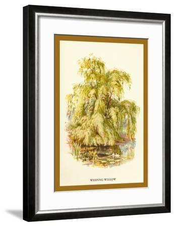 The Weeping Willow-W^h^j^ Boot-Framed Art Print