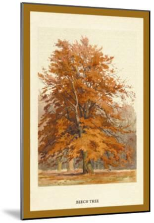 The Beech Tree-W^h^j^ Boot-Mounted Art Print