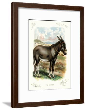 The Donkey--Framed Art Print