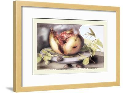 Dish with a Pomegranate, A Grasshopper, A Snail, and Two Chestnuts-Giovanna Garzoni-Framed Art Print