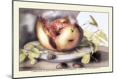 Dish with a Pomegranate, A Grasshopper, A Snail, and Two Chestnuts-Giovanna Garzoni-Mounted Art Print