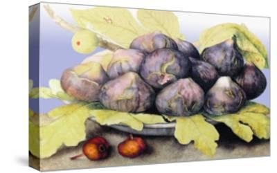 Dish with Figs, Fig Leaves and Small Pomegranates-Giovanna Garzoni-Stretched Canvas Print