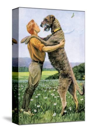 Irish Wolfhound-Louis Agassiz Fuertes-Stretched Canvas Print