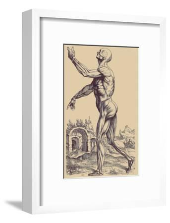 The Second Plate of the Muscles-Andreas Vesalius-Framed Art Print