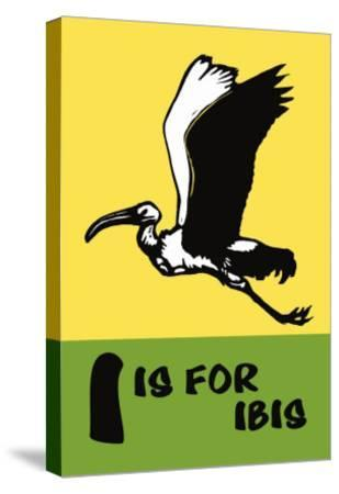 I is for Ibis-Charles Buckles Falls-Stretched Canvas Print