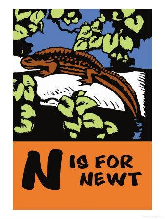 N is for Newt-Charles Buckles Falls-Stretched Canvas Print