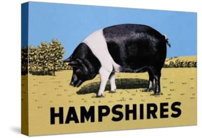 Hampshires--Stretched Canvas Print
