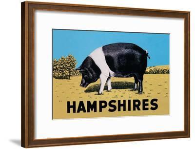 Hampshires--Framed Art Print