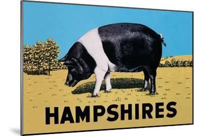 Hampshires--Mounted Art Print