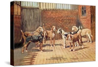 Welsh Hounds-Thomas Ivester Llyod-Stretched Canvas Print