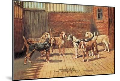 Welsh Hounds-Thomas Ivester Llyod-Mounted Art Print