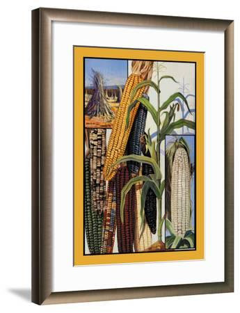 Indian Corn--Framed Art Print