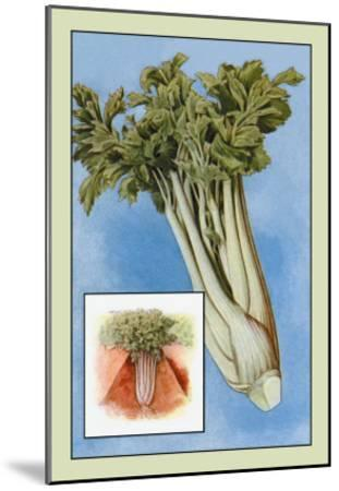 Celery--Mounted Art Print