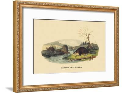 Castor du Canada-E^f^ Noel-Framed Art Print