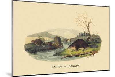 Castor du Canada-E^f^ Noel-Mounted Art Print