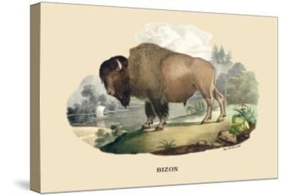 Bison-E^f^ Noel-Stretched Canvas Print