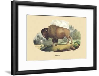 Bison-E^f^ Noel-Framed Art Print