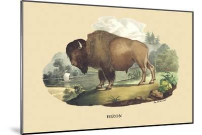 Bison-E^f^ Noel-Mounted Art Print