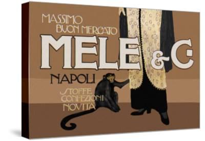 Mele and C-Aleardo Terzi-Stretched Canvas Print