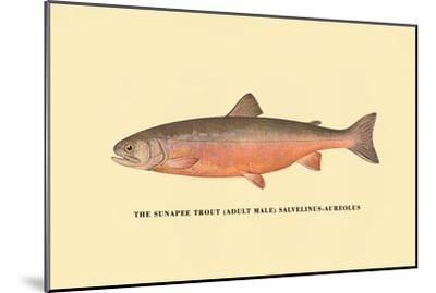 The Sunapee Trout-H^h^ Leonard-Mounted Art Print