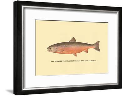 The Sunapee Trout-H^h^ Leonard-Framed Art Print