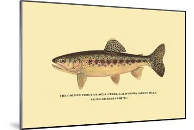 The Golden Trout of Soda Creek-H^h^ Leonard-Mounted Art Print