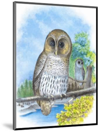 The Barred Owl-Theodore Jasper-Mounted Art Print