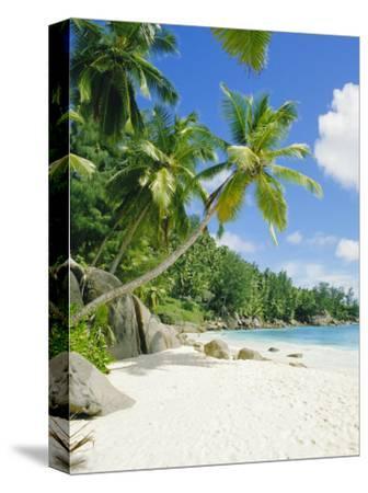 Anse Intedance, Mahe, Seychelles, Indian Ocean-Robert Harding-Stretched Canvas Print