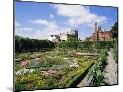 Nash House Gardens, Stratford-Upon-Avon, Warwickshire, England, UK, Europe-Philip Craven-Mounted Photographic Print