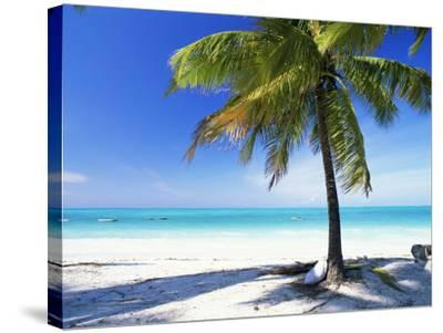 Palm Tree, White Sandy Beach and Indian Ocean, Jambiani, Island of Zanzibar, Tanzania, East Africa-Lee Frost-Stretched Canvas Print