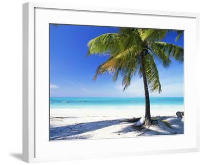 Palm Tree, White Sandy Beach and Indian Ocean, Jambiani, Island of Zanzibar, Tanzania, East Africa-Lee Frost-Framed Photographic Print