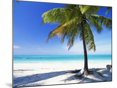 Palm Tree, White Sandy Beach and Indian Ocean, Jambiani, Island of Zanzibar, Tanzania, East Africa-Lee Frost-Mounted Photographic Print