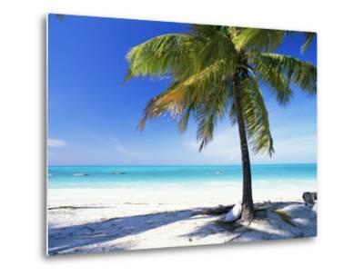Palm Tree, White Sandy Beach and Indian Ocean, Jambiani, Island of Zanzibar, Tanzania, East Africa-Lee Frost-Metal Print