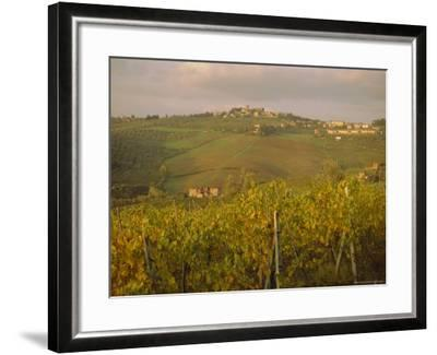 Vineyard, Tuscany, Italy, Europe-Firecrest Pictures-Framed Photographic Print