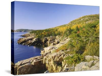 Acadia National Park Coastline, Maine, New England, USA-Roy Rainford-Stretched Canvas Print