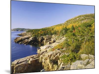 Acadia National Park Coastline, Maine, New England, USA-Roy Rainford-Mounted Photographic Print