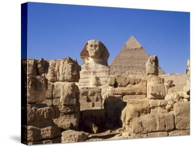 The Great Sphinx and the Chephren Pyramid, Giza, Cairo, Egypt, Africa-Nigel Francis-Stretched Canvas Print