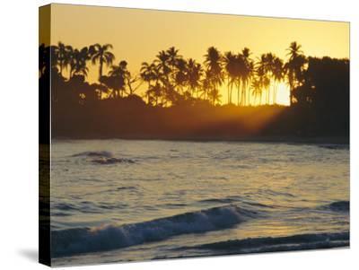 Confresi Beach, Dominican Republic, Caribbean, West Indies-John Miller-Stretched Canvas Print