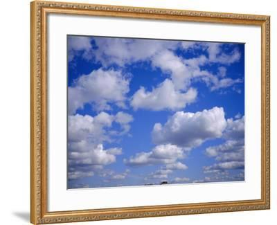 Blue Sky and Puffy White Clouds-Fraser Hall-Framed Photographic Print