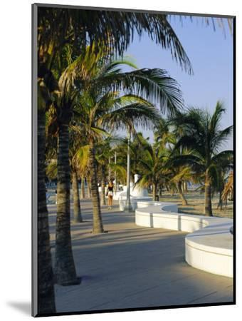 Fort Lauderdale, Wave Wall Promenade, Florida, USA-Fraser Hall-Mounted Photographic Print