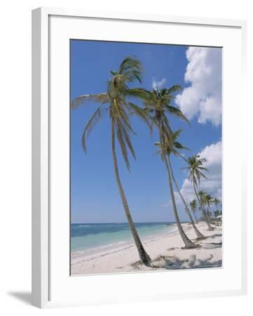 Saona Island, South Coast, Dominican Republic, Central America-Guy Thouvenin-Framed Photographic Print